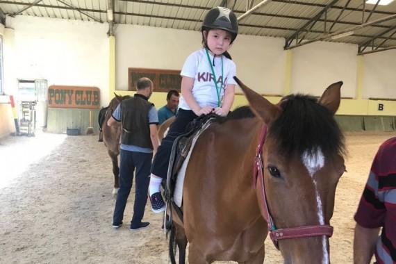 Miniklerin at çiftliği gezisi
